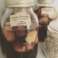 Maple and Chilli Pickled Shallots (vegan friendly)