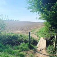 Springtime at Home:  An early morning hike through English farmland